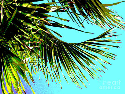 Sunny Tropical Afternoon Poster by Ann Powell