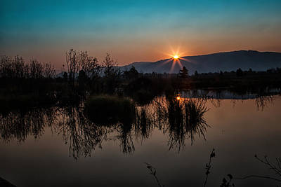 Sunrise Over The Beaver Pond Poster by Ronald Lutz