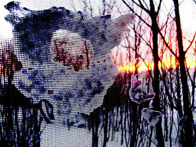 Sunrise Through A Screen Door Poster