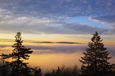 Sunrise Through Morning Fog Willamette Poster