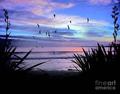 Sunset Down Under Poster by Karen Lewis