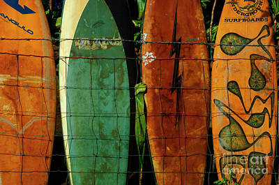 Surfboard Fence 1 Poster by Bob Christopher