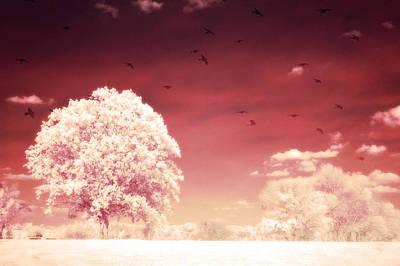 Surreal Fantasy Dreamy Infrared Nature Landscape Poster