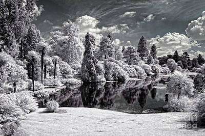 Surreal Lake - Infrared Photography Poster