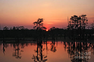 Poster featuring the photograph Swamp Sunset by Luana K Perez