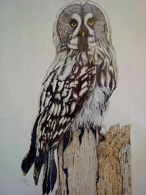 Swedish Uwl Poster by Per-erik Sjogren