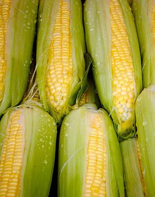 Sweet Corn Poster by Jen Morrison