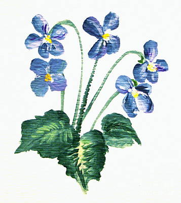 Sweet Violets Poster by Leea Baltes