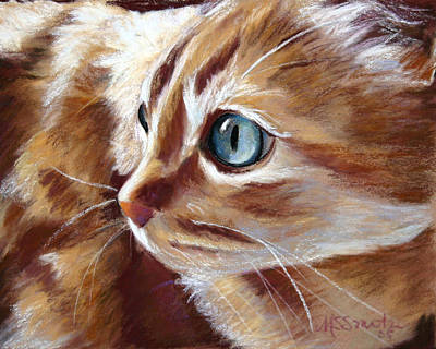 Tabby Cat  Poster by Mary Sparrow