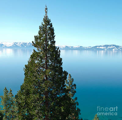 Tahoe Tranquility Poster