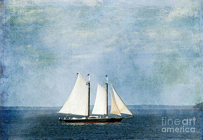 Poster featuring the photograph Tall Ship by Alana Ranney
