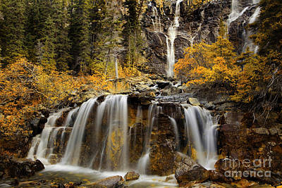 Tangle Falls, Jasper National Park Poster by Keith Kapple