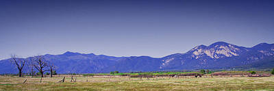 Taos Landscape Poster by David Patterson