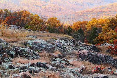Taum Sauk Mountain Glade I Poster by Greg Matchick