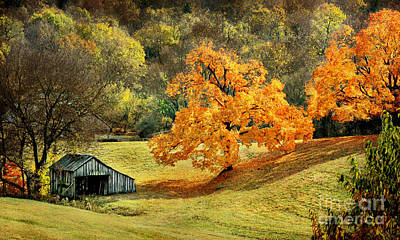 Tennessee Autumn Farmland Poster by Cheryl Davis