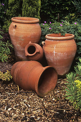Terracotta Pots Poster by Adrian Thomas