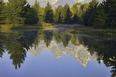 Teton Morning Reflections Poster
