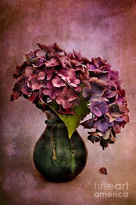 Textured Hydrangea Poster by Ann Garrett