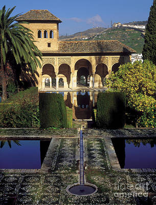The Alhambra Palace Of The Partal Poster