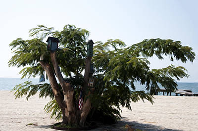 The Birdhouse Tree On The Beach Poster by Bill Cannon