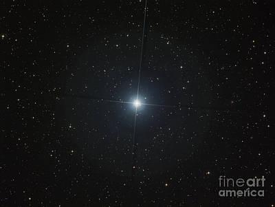 The Bright White Star Castor Poster