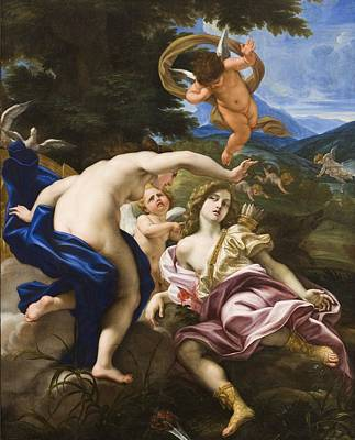 The Death Of Adonis Poster by Il Baciccio