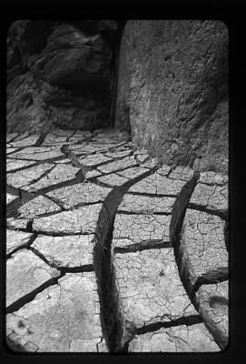 The Dry Season Poster