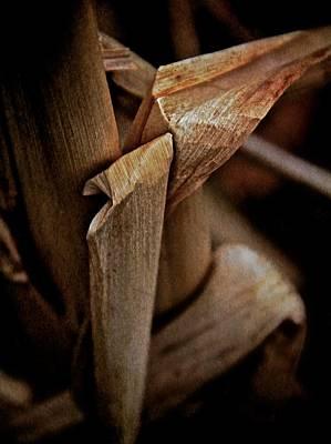The Dry Season Poster by Odd Jeppesen