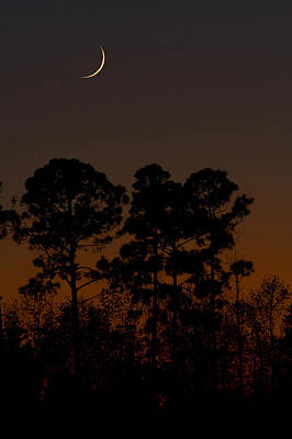Poster featuring the photograph The Fingernail Moon by Dan Wells