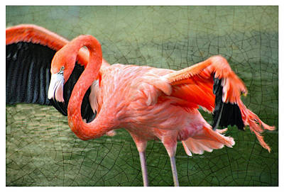 Poster featuring the photograph The Flamingo by Rosemary Aubut