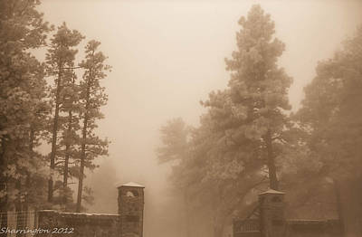 Poster featuring the photograph The Fog by Shannon Harrington