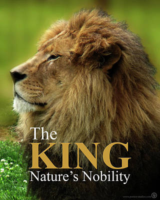 Poster featuring the photograph The King by Jeremy Martinson