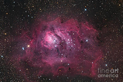The Lagoon Nebula Poster by Roth Ritter
