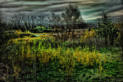 Poster featuring the digital art The Marsh by Kimberleigh Ladd