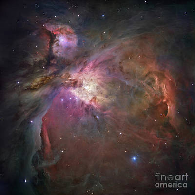 The Orion Nebula Poster by Stocktrek Images