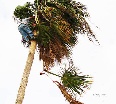 The Palm Tree Trimmer Poster by Roena King