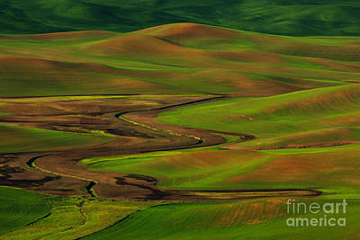 The Palouse Poster by Beve Brown-Clark Photography