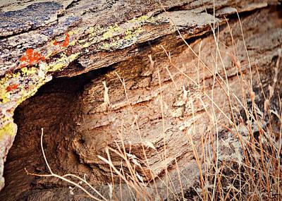 The Rock Facing Poster by Gilbert Artiaga