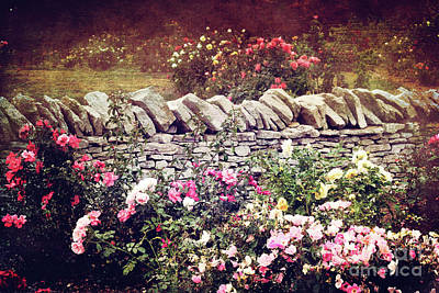 The Rose Garden Poster by Stephanie Frey