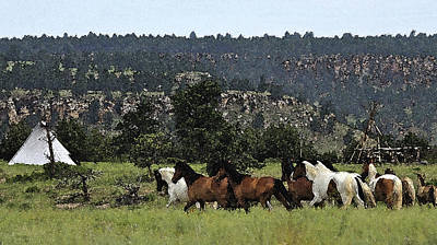 The Wild Mustangs In The Black Hills Poster
