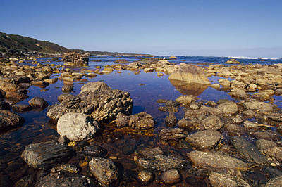 Tidal Pools Fill The Rocky Foreshore Poster