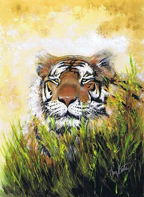 Tiger In Grass Poster