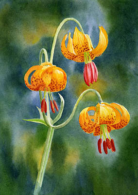 Tiger Lilies #2 Poster by Sharon Freeman