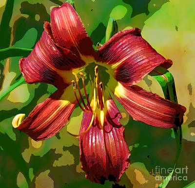 Poster featuring the photograph Tiger Lily by Cindy Manero