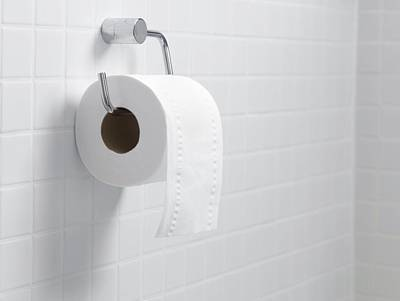 Toilet Paper Holder And Roll Poster