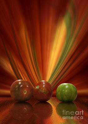 Poster featuring the digital art Tomatoes by Johnny Hildingsson
