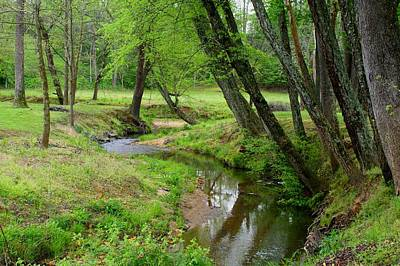 Poster featuring the photograph Toms Creek In Early Spring by Kathryn Meyer