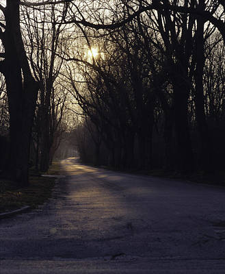 Tree Lined Paved Road With An Evening Poster by Greg Probst
