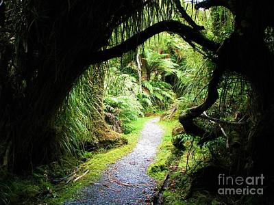Poster featuring the photograph Tree Tunnel by Michele Penner