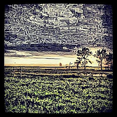 #trees #northdakota #nature #sky Poster